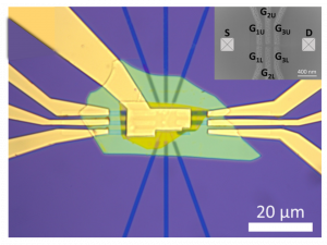 Gate controlled quantum dots in monolayer WSe2